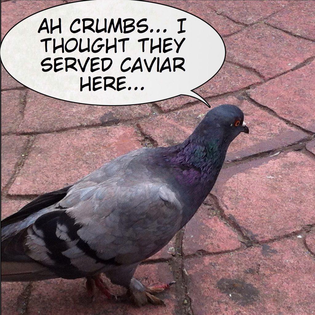 Caviar - Comic